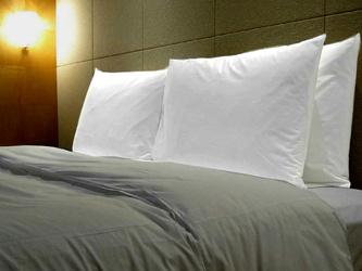ホテルの少し大きい枕